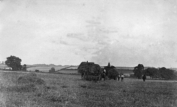 """THE LAST LOAD"" A harvest view of Costessey. Postcard from the F.W.Welch Series."