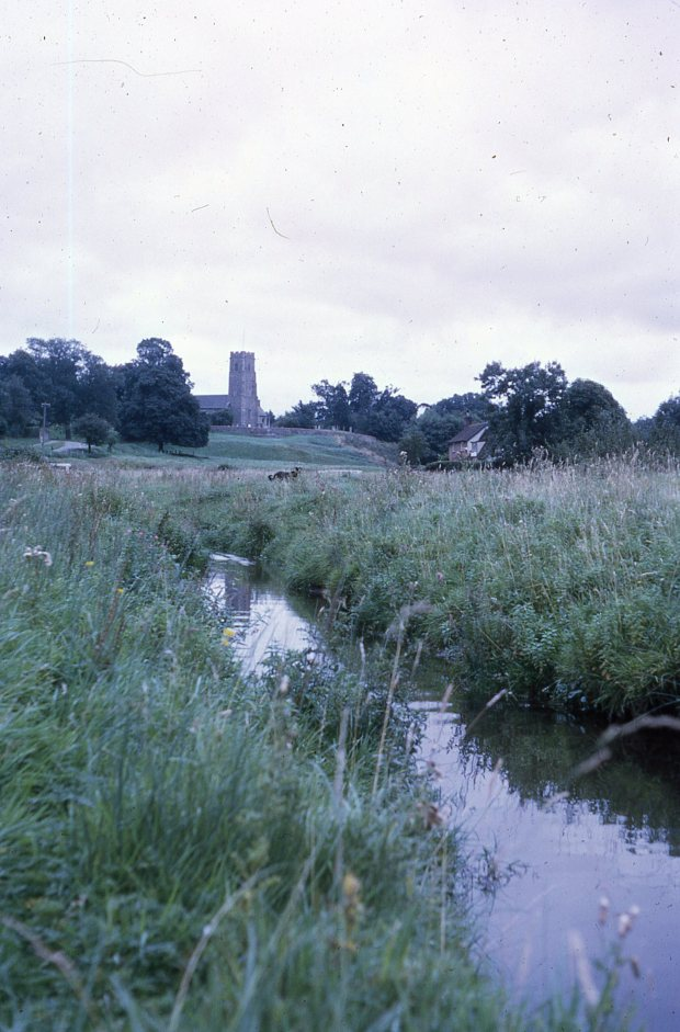 The Beck at Shotesham All Saints from the common