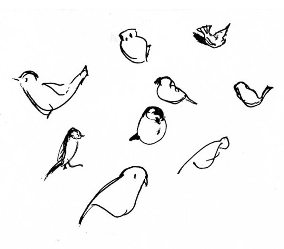 Sparrows and tits