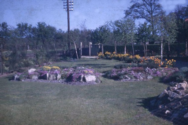 The front garden over 60 years ago in 1949. Note how it is dominated by a telegraph pole.