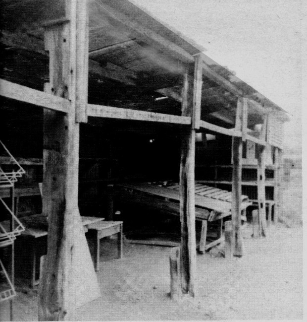 A shed built out of the timbers of the ship Mountaineer at Acle in 1982; this area is now a housing estate.