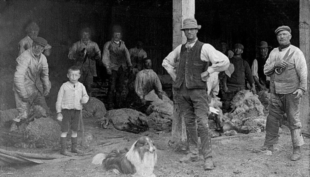 This picture taken in Costessey before WW1 show the wool industry in Norfolk.