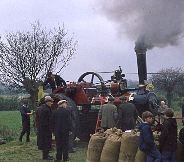 Traction engine driving a threshing machine